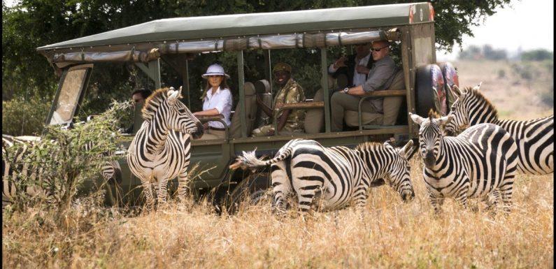 Nairobi Safaris Tour Guide For New Tourists
