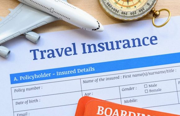 Look for the Best Travel Insurance Quotes from Various Companies